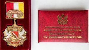 Благодарность от земли Воронежской - писателям